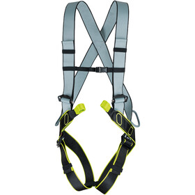 Edelrid Solid Harness L night/oasis